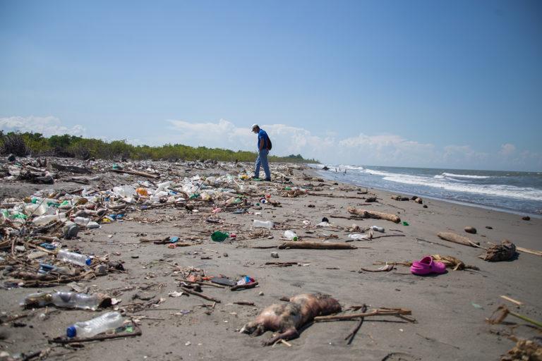 Francisco Díaz, presidente de los patronatos de las Barra de Motagua y Barra Cuyamel, camina en medio de la playa de su comunidad, contaminada por la basura y animales muertos que el Río Motagua arrastra a su desembocadura con el atlántico hondureño. Omoa, Cortés, 28 de septiembre de 2020. Foto: Martín Cálix