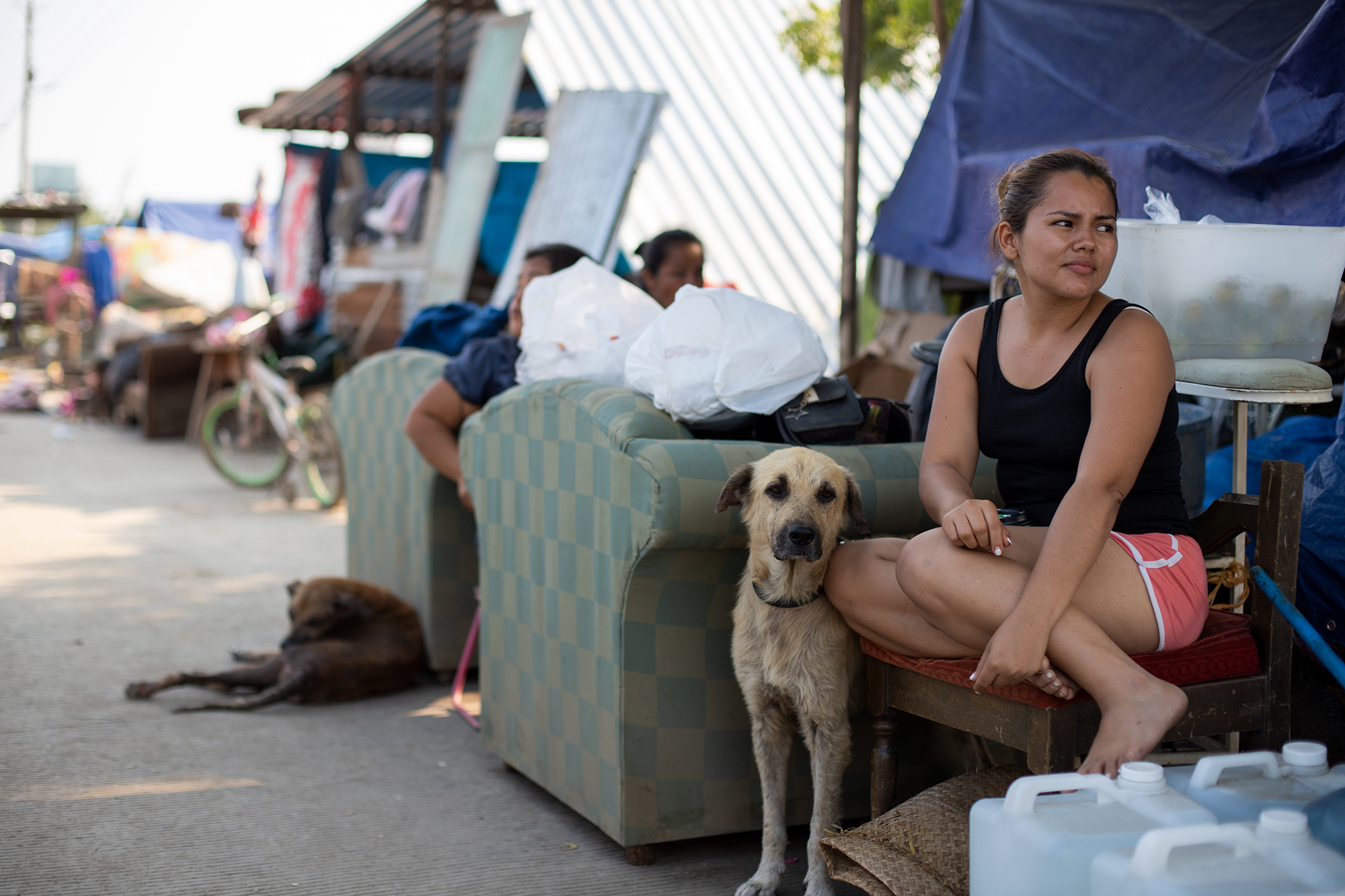 Angélica tiene 25 años, es madre soltera y lleva nueve días junto a su familia, su hijo, Beatriz —quien es su madre—, su abuela Olga y sus mascotas en un refugio improvisado con plásticos sobre la mediana de la CA-13 o Bulevar del Este que conduce desde La Lima hacia la ciudad de San Pedro Sula. La Lima, Cortés, 13 de noviembre de 2020. Foto: Martín Cálix.
