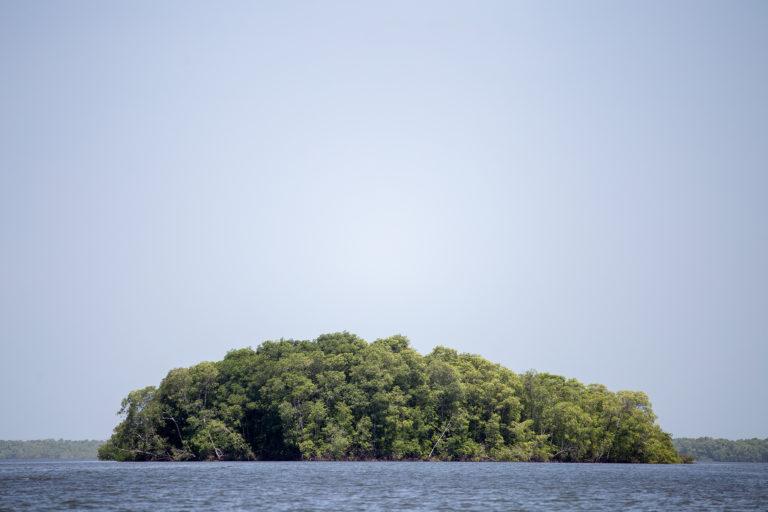 Un islote de mangle en la Bahía de Chismuyo. El bosque de mangle —importante para la biodiversidad del Golfo de Fonseca— se ve amenazado por el avance de los proyectos extractivos en la zona. Nacaome, Valle, 22 de julio de 2021. Foto: Martín Cálix.