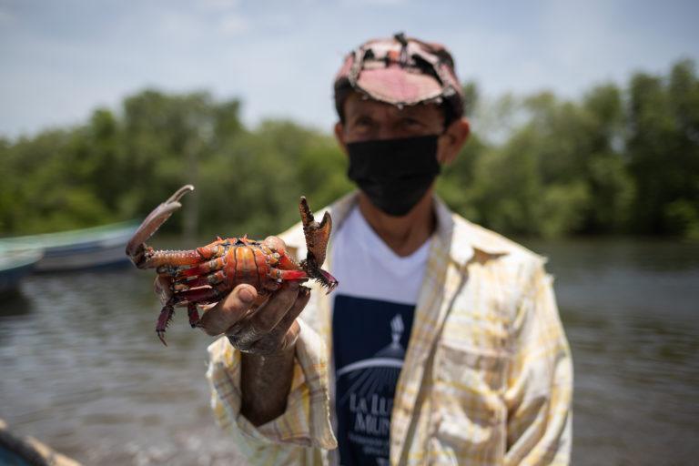 Juan Ángel Arias de 49 años muestra un cangrejo que ha pescado en la Bahía de Chismuyo. Cada día, Juan Ángel, sale a pescar a las 6:00 a. m. junto a sus compañeros, lo hacen para un intermediario de pescado y mariscos, quien es la persona que les provee la lancha y el combustible. Nacaome, Valle, 22 de julio de 2021. Foto: Martín Cálix.